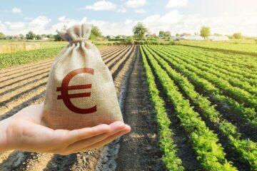 Паханое поле: выгодно ли аграриям кредитоваться в украинских банках?